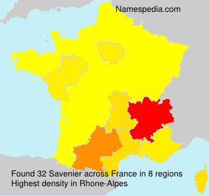 Surname Savenier in France