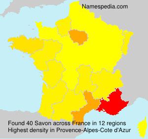Familiennamen Savon - France
