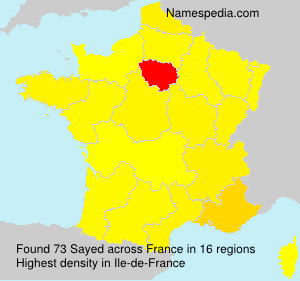Surname Sayed in France