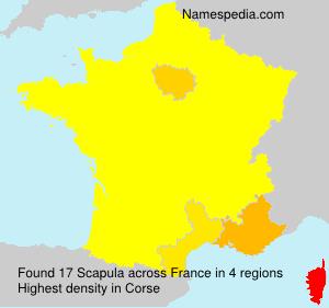 Familiennamen Scapula - France