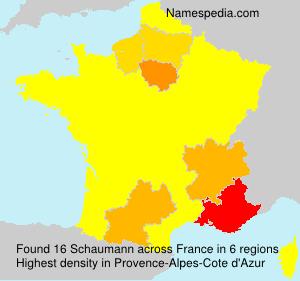 Surname Schaumann in France