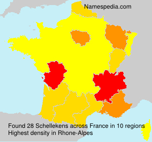 Surname Schellekens in France