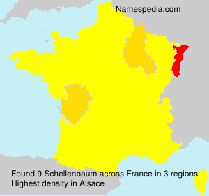 Surname Schellenbaum in France
