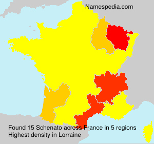 Surname Schenato in France