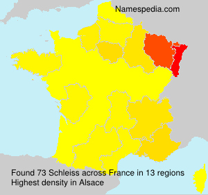 Surname Schleiss in France