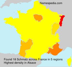 Surname Schmalz in France