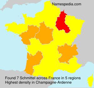 Surname Schmittel in France