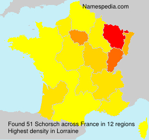 Surname Schorsch in France