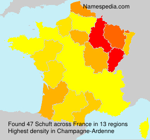 Surname Schuft in France