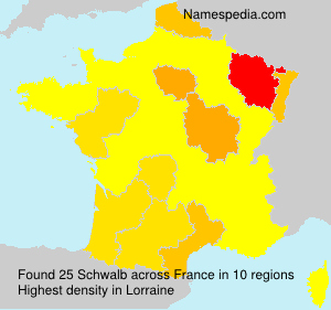 Surname Schwalb in France