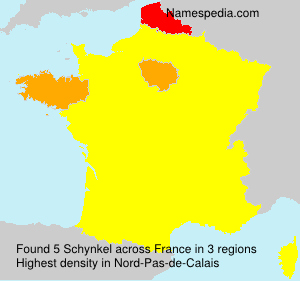 Surname Schynkel in France