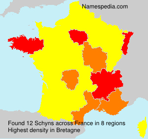 Surname Schyns in France
