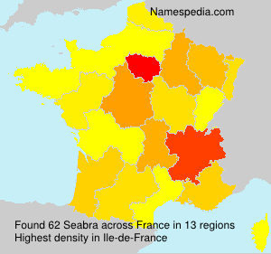 Surname Seabra in France