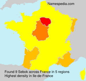 Surname Sebok in France
