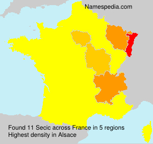 Surname Secic in France