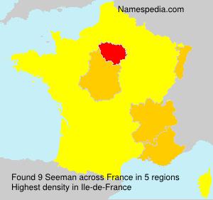 Surname Seeman in France