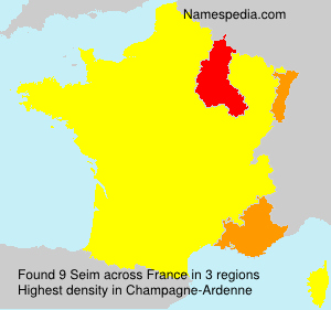 Surname Seim in France