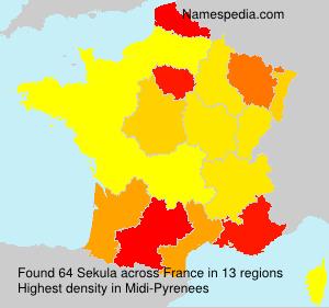 Surname Sekula in France