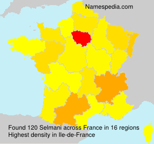 Surname Selmani in France