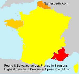 Surname Selvatico in France