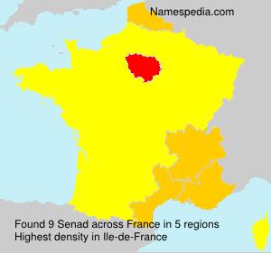 Surname Senad in France