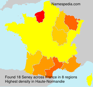 Surname Seney in France