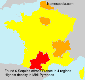 Surname Sequies in France