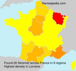 Surname Seremet in France
