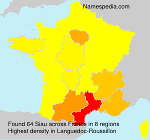 Surname Siau in France
