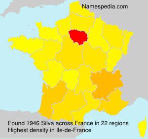 Surname Silva in France