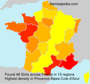 Surname Sims in France