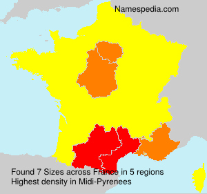 Surname Sizes in France
