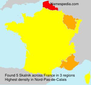 Surname Skalnik in France