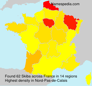 Surname Skiba in France
