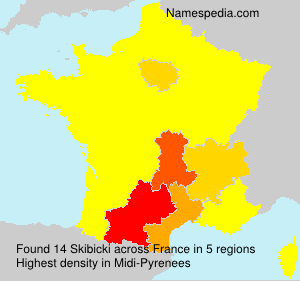 Surname Skibicki in France
