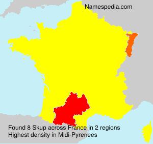 Surname Skup in France