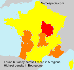 Surname Slaney in France
