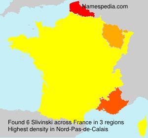 Familiennamen Slivinski - France