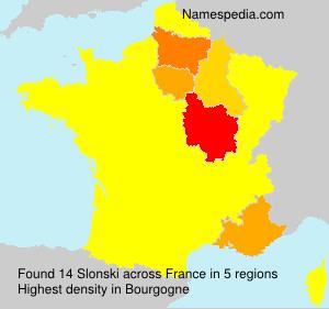 Familiennamen Slonski - France
