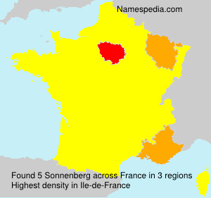 Surname Sonnenberg in France