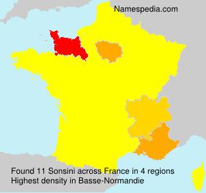 Surname Sonsini in France