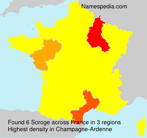 Surname Soroge in France