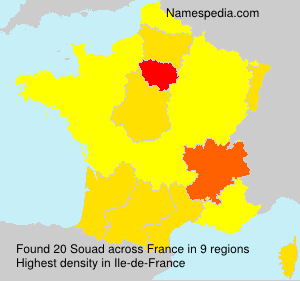 Surname Souad in France
