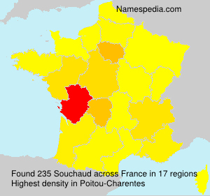 Surname Souchaud in France