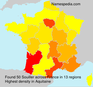 Surname Souiller in France