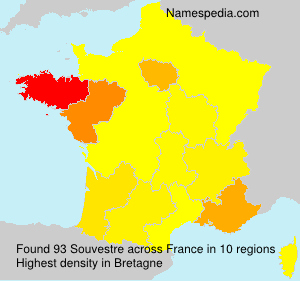 Surname Souvestre in France