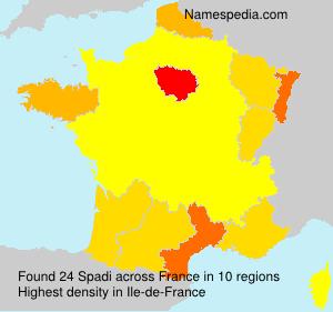 Surname Spadi in France
