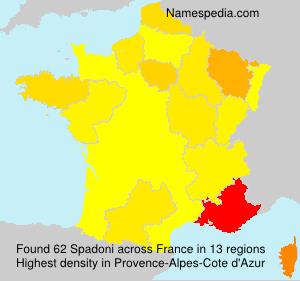 Surname Spadoni in France