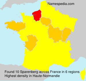 Surname Sparenberg in France