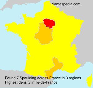 Surname Spaulding in France